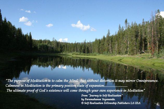 PY Quotes Calmness in meditation Reflection trees 2014