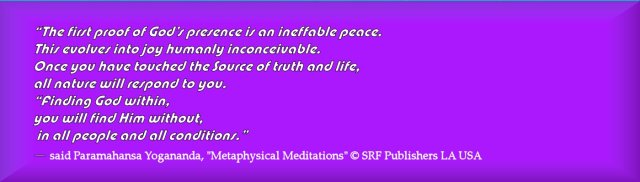 PY Quotes Meditation 6 2014